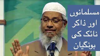 Zakir Naik aur Musalmano key Bongian
