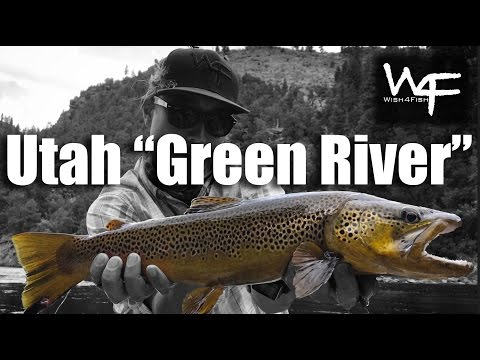 W4F - Fly Fishing