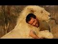 """watch he video of Los animales salvajes """" los mejores amigos del hombre """""""