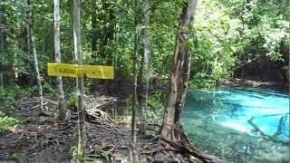 The Blue Pool, a short walk from the Emerald Pool (Sra Morakot) in Krabi Thailand.