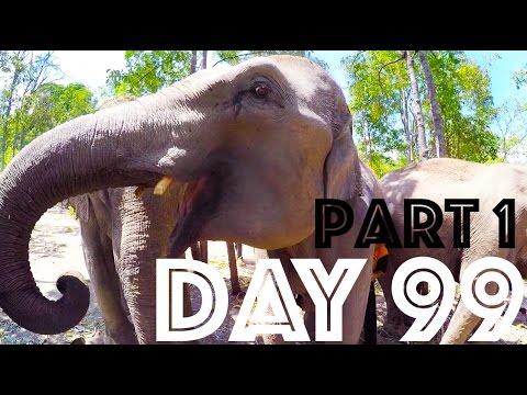 Elephant Sanctuary Thailand   Day 99