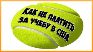 Теннис в Майами. Tennis COACH. Как Не платить за учебу в США . Реальная история