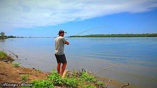 Рыбалка на Волге. ЗАКИДУШКИ на современный лад. САЗАН, КАРАСЬ. Макуха (жмых). Рыбалка на мотоцикле.