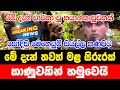 Today Hiru Just Now Sinhala Here is another special news just received