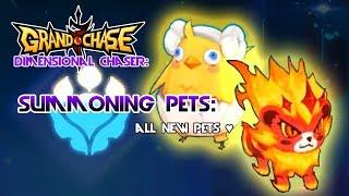 Grand Chase Pet Battle