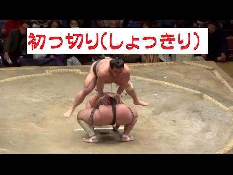 【爆笑!相撲コント】初っ切り(しょっきり) ~目次付き~