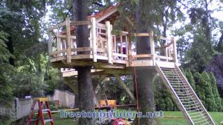 Tree house and cargo net time lapse, NY USA