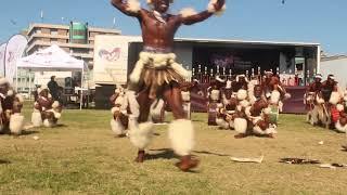 Kangaroo Zulu Dancers