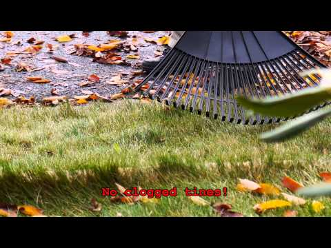 The best way to clean leaves on grass