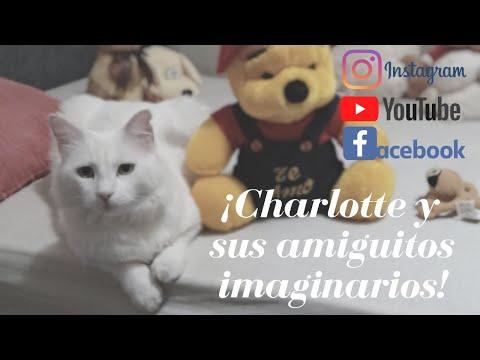 ¡la-gatita-charlotte-y-sus-amiguitos-imaginarios!
