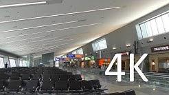 A 4K Tour of Las Vegas's McCarran International Airport (LAS)