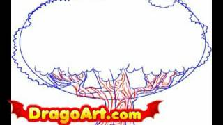 How to draw an Oak tree, step by step