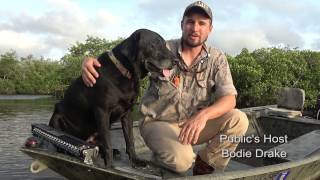How A Duck Dog Should Ride In a Boat