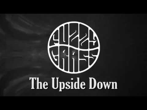 Fuzzy Grass - The Upside Down Mp3