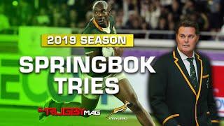 2019 Springbok Tries