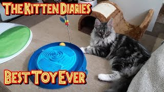 The Kitten Diaries - Best Toy Ever