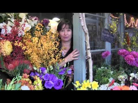 #MidweekBellinoBreak - Clara Bellino 2.3.2016