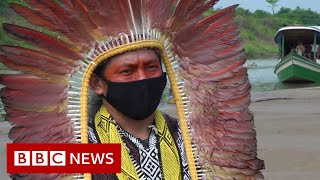 Amazon rainforest: 'Paying the price for disrespecting nature' - BBC News