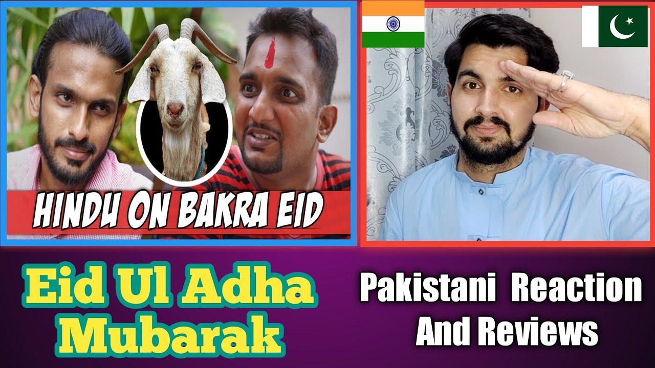 Download Pakistani Reaction On Hindu on Bakra Eid - Sajid Ali