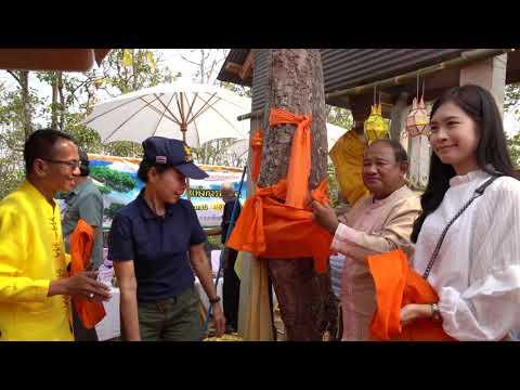 จังหวัดน่าน ทำพิธี บวชป่า และสมโภชน์ ม่อนพระเจ้า ในโครงการ 21 ปี แห่งการพัฒนาสู่ผืนป่าแห่งชุมชน