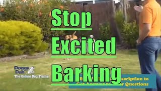 Stopping Excited Barking - How to Stop an Overexcited Dog From Barking?
