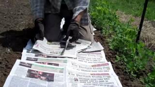 Newspaper Weed Control!