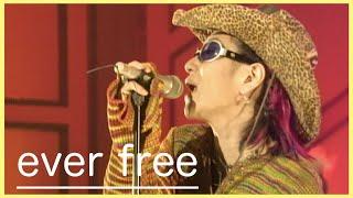 hide with Spread Beaver - ever free Studio Live