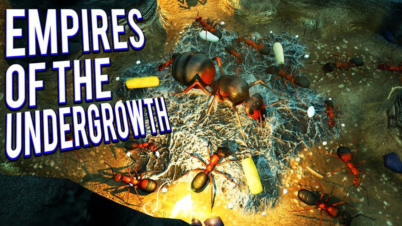 93cb4d097c4 BLACK ANTS VS SLAVE MAKER ANTS! SPIDER ATTACKS - EMPIRES OF THE UNDERGROWTH  GAMEPLAY