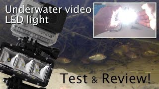 GoPro with Suptig Underwater Video Light in Pond - Test & Review