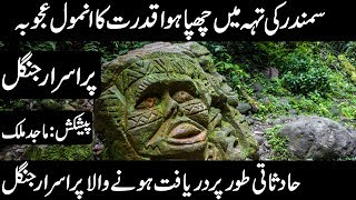 AMAZON JUNGLE | DISCOVERY OF AMAZON JUNGLE | ANIMALS OF AMAZON | Urdu Discovery