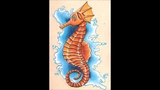 Seahorse Drawing with colored pencils ♥