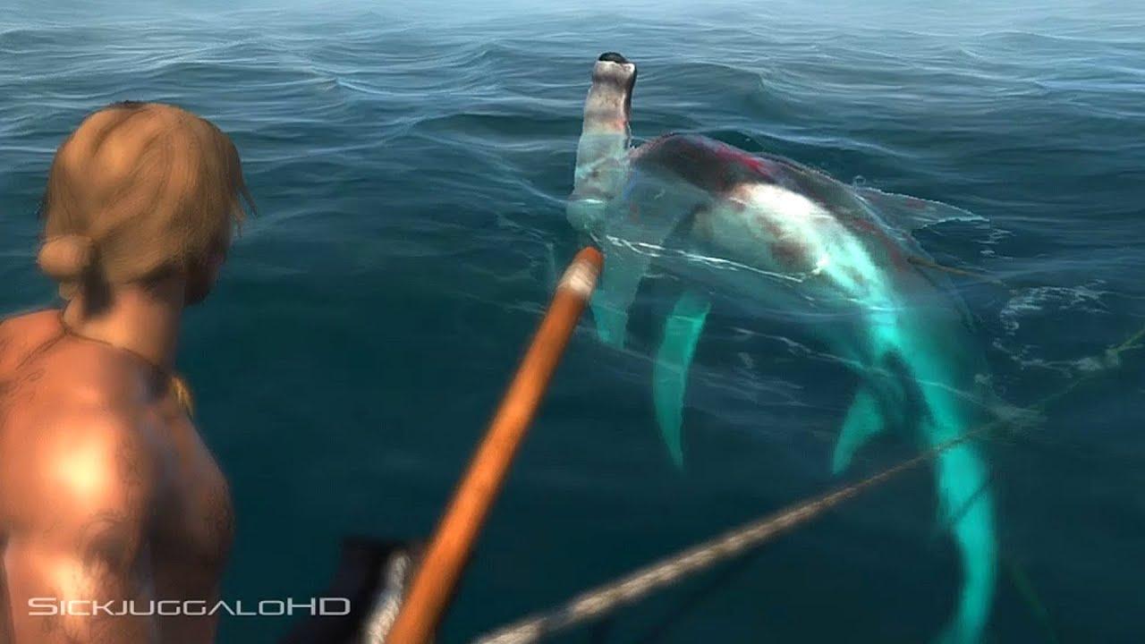 Killer Whale Hd Wallpaper Assassin S Creed Iv Black Flag Hammerhead Shark