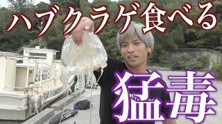 釣ったハブクラゲをその場で食べる【ジョーブログ サバイバル】 thumbnail