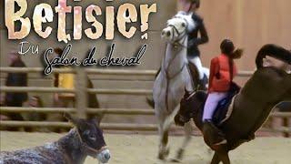 Video [ Bêtisier N°1 ] Salon du cheval download MP3, 3GP, MP4, WEBM, AVI, FLV Oktober 2018