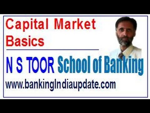 Capital Market Basics