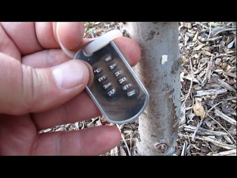 Making Stamped Metal Identification Tags For Fruit Trees & Other Perennials