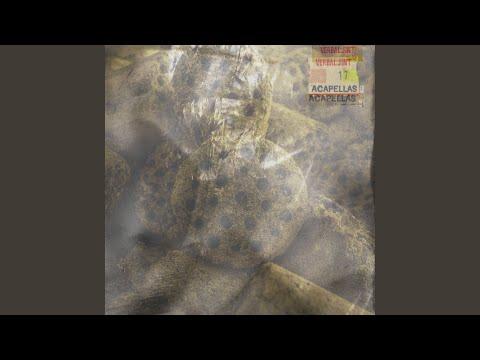 VJ in Grey (애매해) (BPM85)