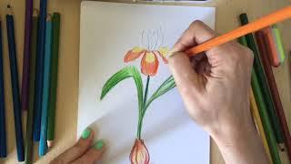Творческийквест: Великие Художники #Акварелькаучит