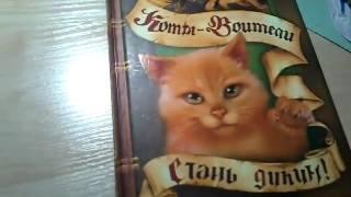 Обзор книги коты воители стань диким