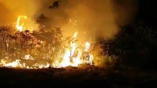 El fuego de Gran Canaria afecta a un perímetro de 60 km