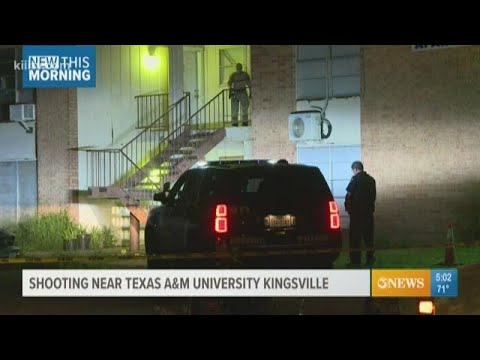 Kingsville Police Investigate Shooting At Utopian Apartments