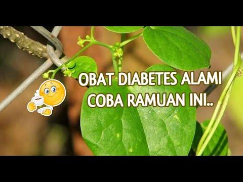 obat-herbal-kencing-manis-paling-ampuh-||-cara-mengobati-diabetes