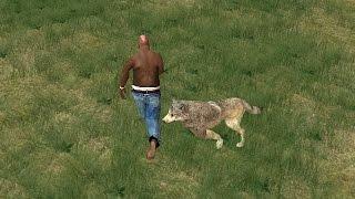 GTA San Andreas - Волк орал человеческим голосом!!!