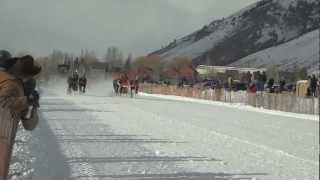 Cutter Races Jackson Hole WY