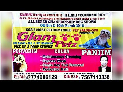 All Breed Dog Show 2k19 | Sant Inez | Goa India