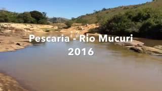 Pescaria no Rio Mucuri - 2016