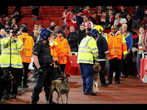 Arsenal Cologne Emirates match delayed –Riot police and dogs pictured inside ground
