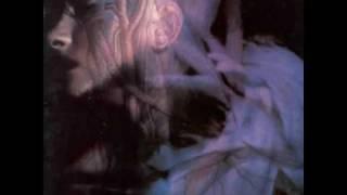 Danielle Dax - Bed Caves