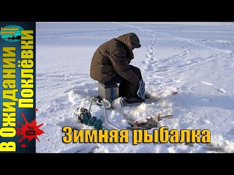 каша для прикормки рыбы своими руками