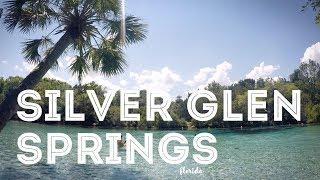 Silver Glen Springs - Florida